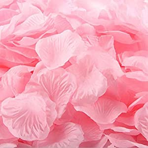 Silk Rose Petals Artificial Flower Petals for Wedding Rose Petals Confetti Flower Girl Bridal Shower Hotel Rose Petals Home Party Valentine Day Flower Decoration Rose Petals 3000 Pieces (pink) 16
