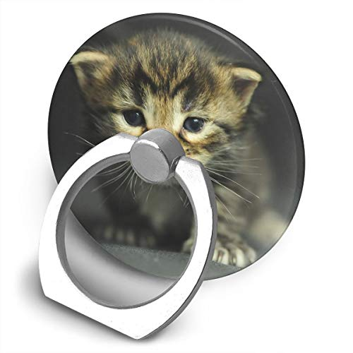 Yuotry 360 Degree Rotating Ring Stand Grip Mounts Cats Kittens Dressed Up Universal Phone Ring Bracket Holder Smartphone Ring -