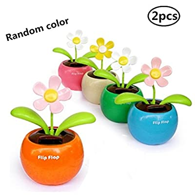 Eshylala 2 Pcs Solar Dancing Flower Solar Apple Flower Bobble Plant Rocking Swing Pot for Car Dashboard Office Desk, No Battery Required, No Need to Water: Home & Kitchen