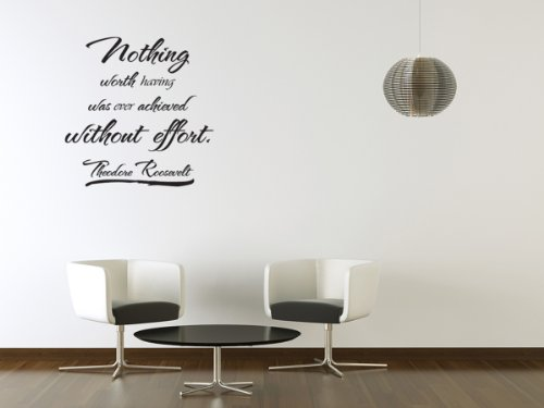 Vinyl Wall Art Theodore Roosevelt Quote Sticker Decal Decor Inspirational