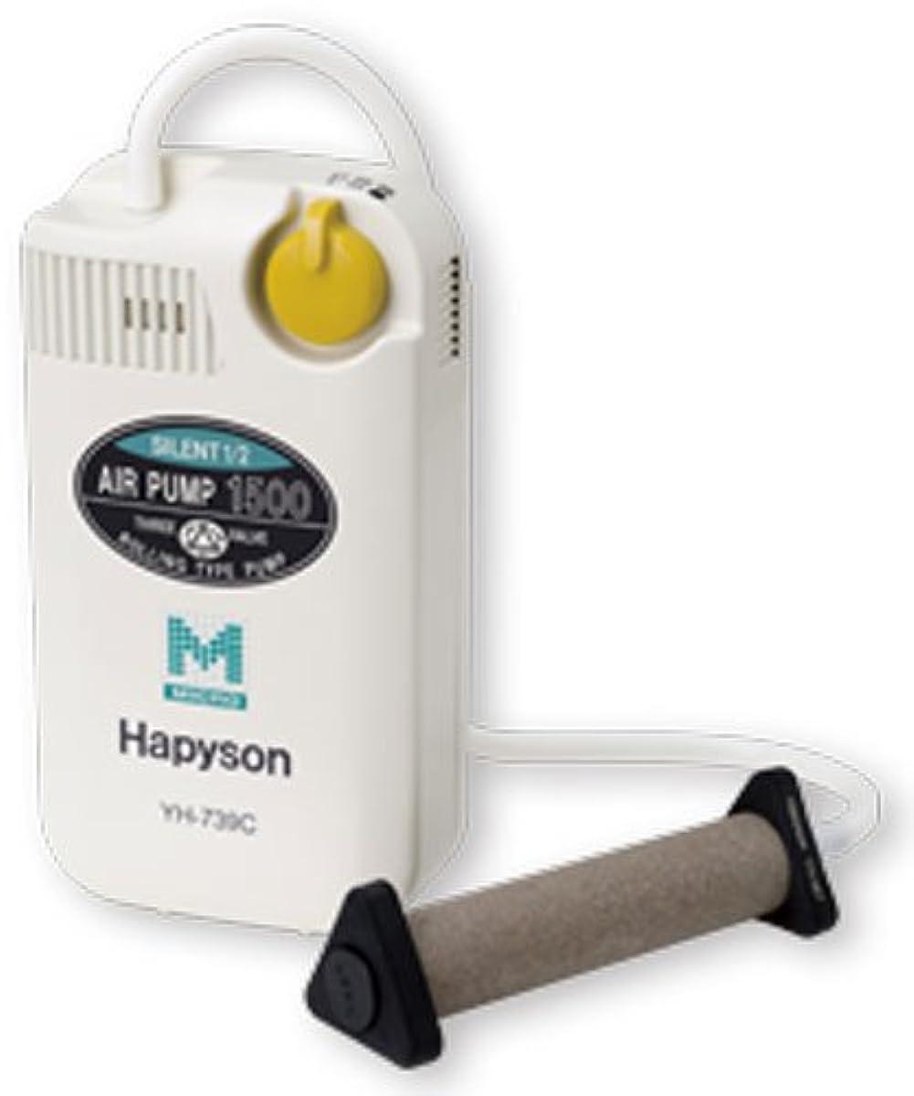 [해외] 해피손 하피손YH739C건전지식 에어 펌프 마커 기능