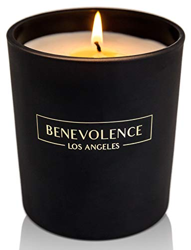 Benevolence LA Scented Candle - Aromatherapy Candles - All Natural Soy Wax Strong Scented Candles with Matte Black Glass Gift Boxed (Eucalyptus & Chamomile)
