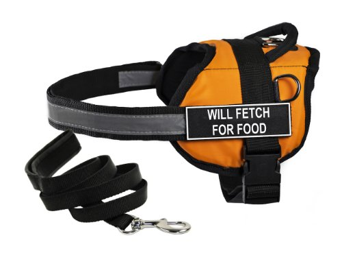 Dean & Tyler's DT Works Orange ''WILL FETCH FOR FOOD'' Harness, Large, with 6 ft Padded Puppy Leash. by Dean & Tyler