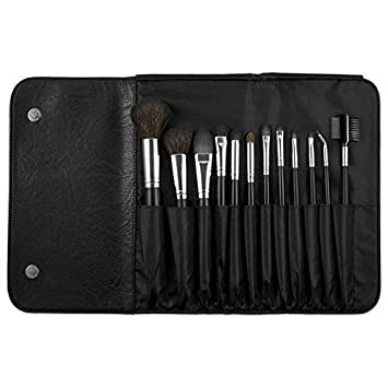 Coastal Scents 12 Piece Brush Set BR-SET-015