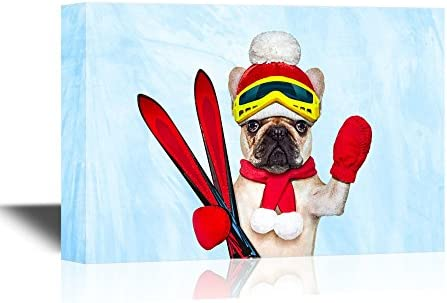 Skiing Funny Dog with Skiing Equipment