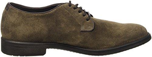 Geox U Jaylon D, Zapatos de Cordones Derby para Hombre Braun (TAUPEC6029)