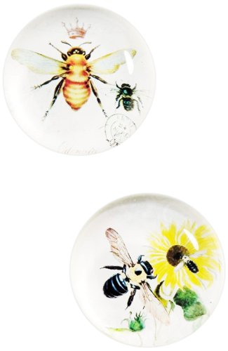 Boston International October Hill Bee Glass Magnets, Set of 4