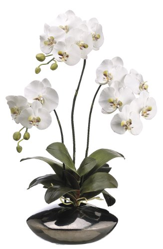 Silk-Decor-31-Inch-Phalaenopsis-Plant-WhiteGreen