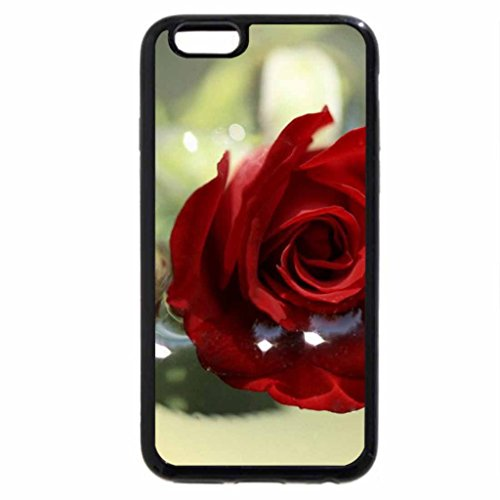iPhone 6S Plus Case, iPhone 6 Plus Case, Red Rose