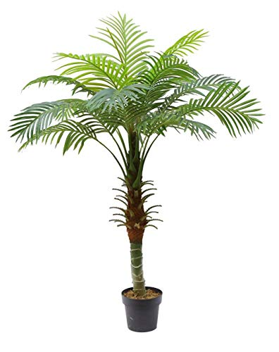 - AMERIQUE Gorgeous and Detailed Exotic 5' Tropical Hawaii Palm Arecaceae Tree Artificial Silk Plant with UV Protection, with Nursery Plastic Pot, Super Quality, 5 Feet Green