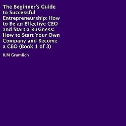 The Beginner's Guide to Successful Entrepreneurship