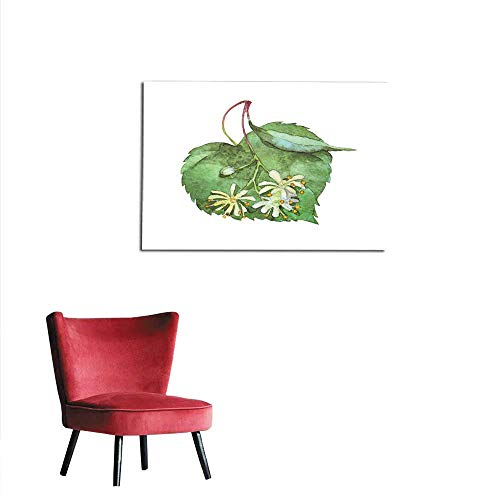 (homehot Photo Wall Paper Linden Inflorescence on White Mural)