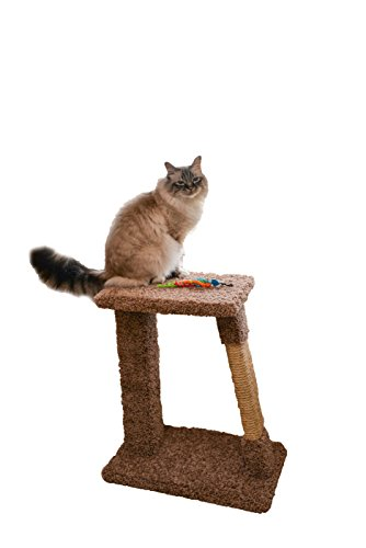 Miller's Cats 1008 The Scratch Pad Cat Furniture Plush Carpeted Platform, Beige, (Carpeted Cat)