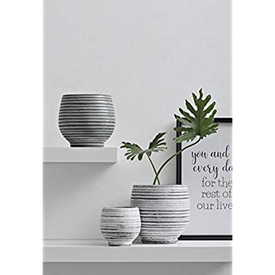 Creative Co-op DA7716 Aqua Striped Round Terracotta Planter : Garden & Outdoor
