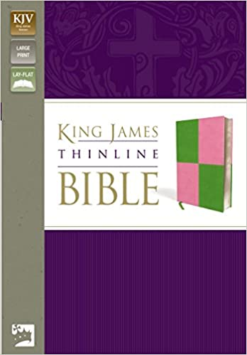 Book KJV THIN BIBLE LP DUOTON MEADOW GRN PINK