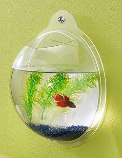 Wall Mount Hanging Beta Fish Bubble Aquarium Bowl Tank, My Pet Supplies