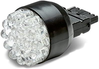 3156 12-LED Blue Light Bulb