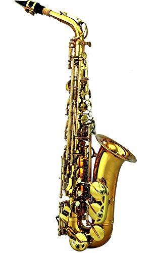 Kết quả hình ảnh cho Alto Saxophone MK007