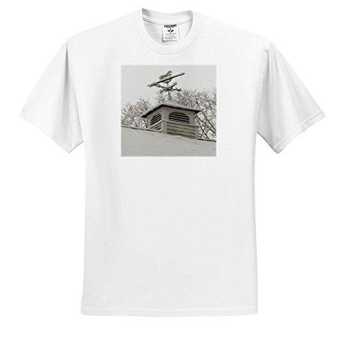 - TDSwhite – Winter Seasonal Nature Photos - Rooftop Weathervane Winter Scene - T-Shirts - Toddler T-Shirt (2T) (ts_284882_15)