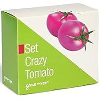 Set Crazy Tomato – die verrückt ausgefallene Geschenkidee: Selbst säen, züchten und ernten - bringt Farbe in die Küche!
