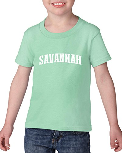Savannah City Georgia State Flag Traveler`s Gift Toddler Heavy Cotton Kids Tee (3TG) Mint -