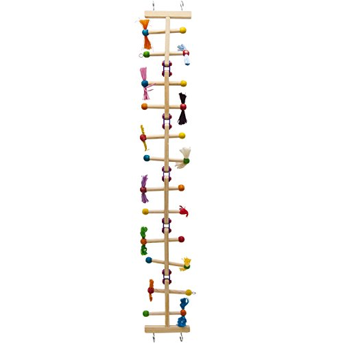 Kaytee Avian Challenge Ladder Medium product image