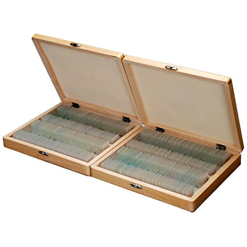 AmScope PS200 Basic Biology Prepared Slide Set for Student and Homeschool Use, Set of 200 Prepared Glass Slides, Includes Fitted Wooden Storage Box ()