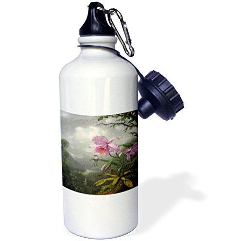 Heade Painting (3dRose Florene Vintage Art - Image of Heades 1800s Painting Hummingbird On Orchid - 21 oz Sports Water Bottle (wb_237443_1))