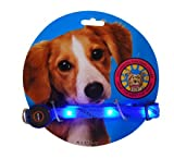 6 LEDlighted Dog Collar Flashing Light Up Safety Collar-Blue, My Pet Supplies