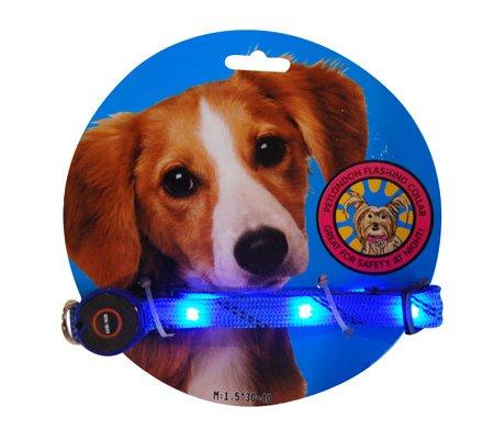 6 LEDlighted Dog Collar Flashing Light Up Safety Collar-Blue, My Pet Supplies