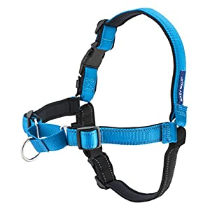 PetSafe Easy Walk Deluxe Dog Harness, No Pull Dog Harness – Perfect for Leash & Harness Training – Stops Pets from…