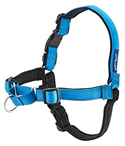 PetSafe Deluxe Easy Walk Harness, Large, Ocean Blue