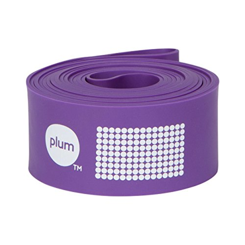 The PlumBand Stretch Band for Dance and Ballet – Colors and Sizes for Kids & Adults – Improve Your Splits, Strength, and Flexibility with Stretching (Plum Purple, Regular)