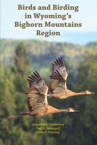 Bighorn Wyoming - Birds and Birding in Wyoming's Bighorn Mountains Region