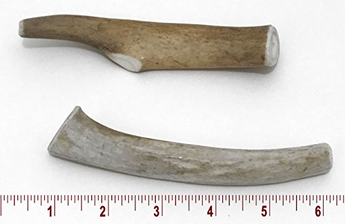 5-7'' Medium Deer Antler Dog Chew - 2 ct by Perfect Pet Chews (Image #8)