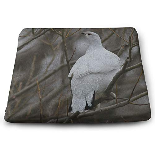 Willow Garden Furniture - Comfortable Seat Cushion Print Animal Bird White Willow Ptarmigan - Memory Foam Filled for Outdoor Patio Furniture Garden Home Office