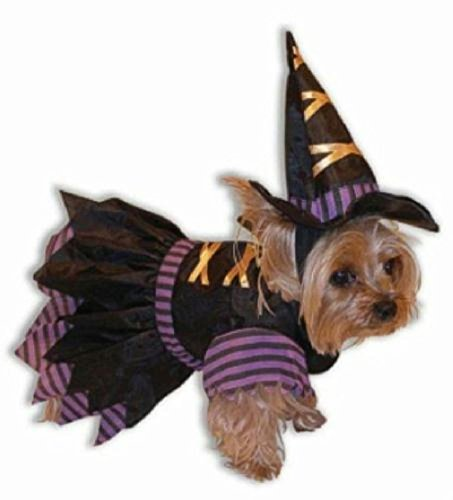 Novel Wicked Witch Puppy Dog Cute Pet Costume Size Small - Pity The Fool Pet Costume