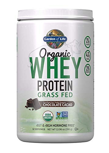 Garden of Life Certified Organic Grass Fed Whey Protein Powder - Chocolate, 12 Servings - 21g California Grass Fed Protein plus Probiotics, Non-GMO, Gluten Free, rBST & rBGH Free, Humane Certified (Best Organic Whey Protein Reviews)