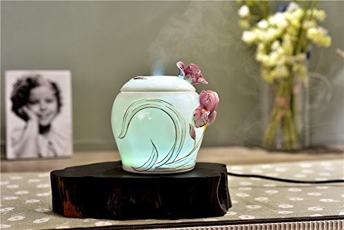 Deerbird Ceramics Iris Flowers 250ml Aromatherapy Essential Oil Diffuser with 7 LED Color Changing Lamps and Waterless Auto Shut-off Ultrasonic Sleep Air Purification Humidifier