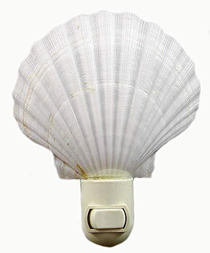 Wild Lotus Seashell Night Light Real White Scallop Shell Beach Decor