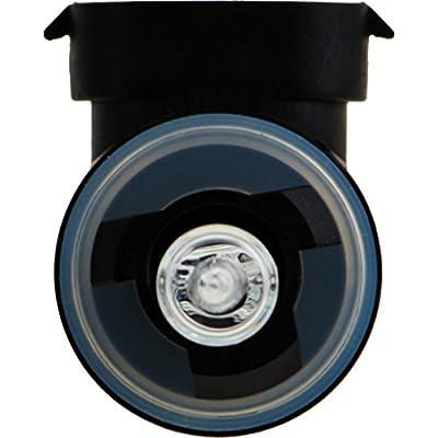 Philips 894B1 Standard Fog Bulb (Pack of 1): Automotive