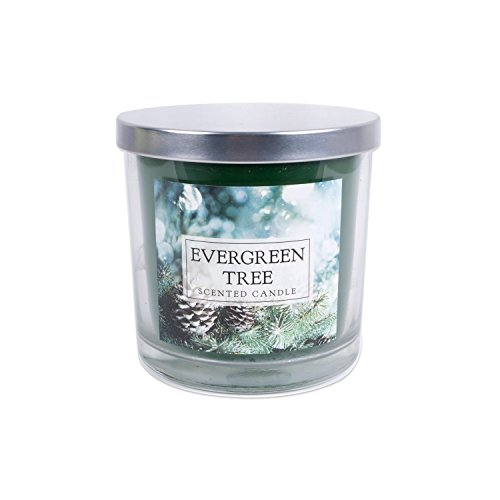 DII Z01476 3-Wick Evenly Burning Highly Scented Large Jar Candle, Evergreen