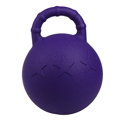 Kesoto 2Pcs Pony Bounce Jolly Ball Stable Field Toy Anti-Burst Horse Soccer Balls, Green and Purple by Kesoto (Image #9)
