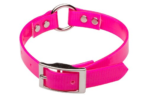 Premier Nite Lite Day-Glo Collar in Pink, Ring in Center, 3/4″ x 20″, My Pet Supplies