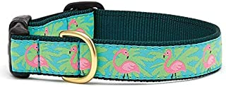 product image for Up Country Flamingo Dog Collar