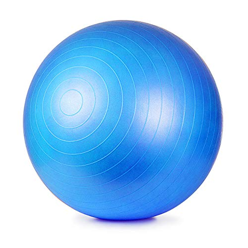 ETCBUYS Premium Exercise Ball 65 cm Extra Thick Yoga Ball and Fitness Balls Yoga Equipment and Accessories for Beginners…