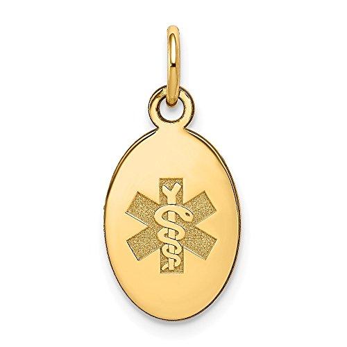 (14K Yellow Gold Medical Alert Jewelry Pendants & Charms 9.5 mm 16 mm Non-enameled Medical Jewelry Pendant)