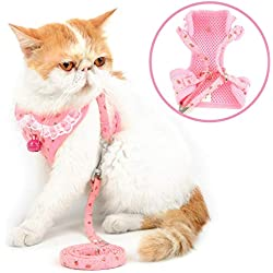 SMALLLEE_LUCKY_STORE Universal Cat and Small Dog Harness and Leash Set with Bell Floral Print Lace Collar No Pull Cute Girl Vest Harness Escape Proof Adjustable Puppy Kitten Clothes,Pink XL