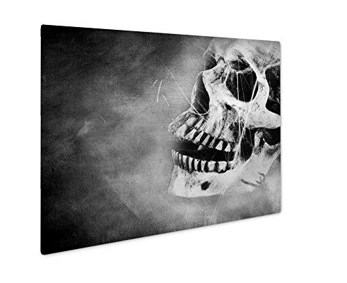 Ashley Giclee Creepy Skull, Wall Art Photo Print On Metal Panel, Black & White, 8x10, Floating Frame, (How Was Halloween Created)