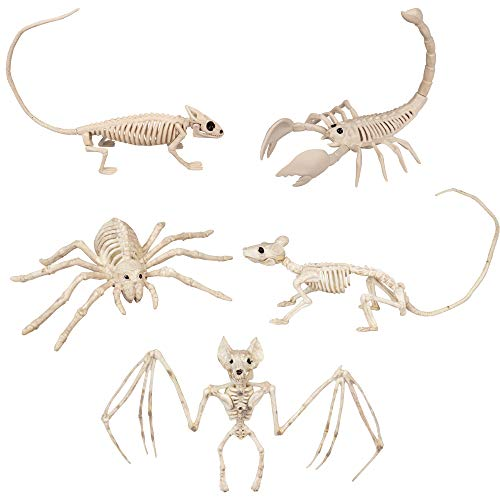 SCS Direct Halloween Animal Skeleton Value Pack Decorations (Set of 5) - Weatherproof Indoor Outdoor Realistic Animal Bones Body -